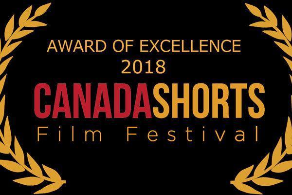 جایزه عالی جشنواره کانادایی به چشم انداز خالی رسید