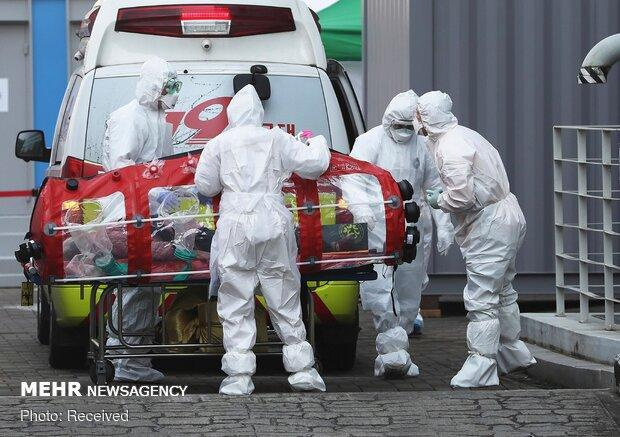 مرگ و میر در ایتالیا رکورد زد