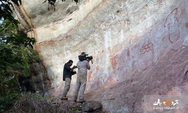 کشف بزرگترین مجموعه سنگ نگاره های ماقبل تاریخ در جنگل های آمازون، عکس