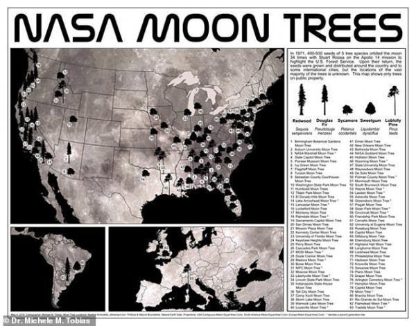 ناسا نقشه درختانِ ماه را منتشر کرد