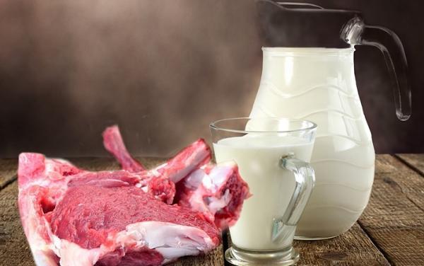 شیر و گوشت گاو می توانند سرطان زا باشند؟