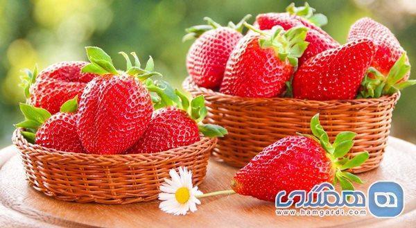 این میوه بهاری در پاندمی کرونا خورده نشود