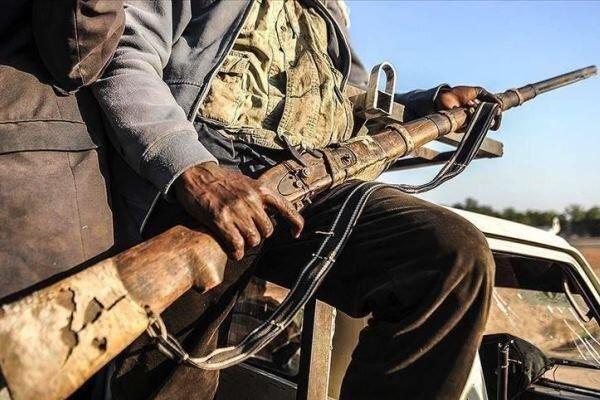 بیش از 50 نفر در حمله ای در مرز نیجر جان باختند