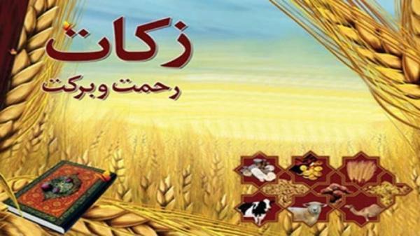 پرداخت 14 میلیارد تومان زکات در استان قزوین