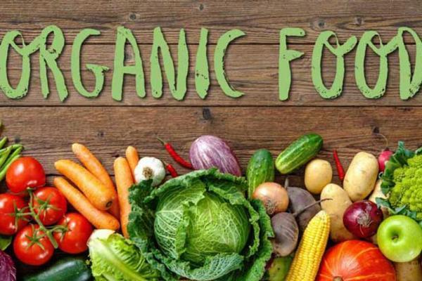 سعی کنید به فرزندانتان غذای ارگانیک بدهید